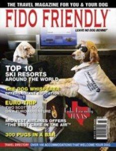 DryFur Pads Featured Fido Friendly Airline Issue