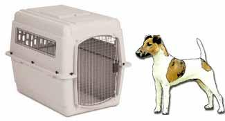 Jack Russel Terrier Airline Kennel 300