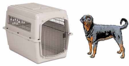 What Size Travel Crate For Rottweiler