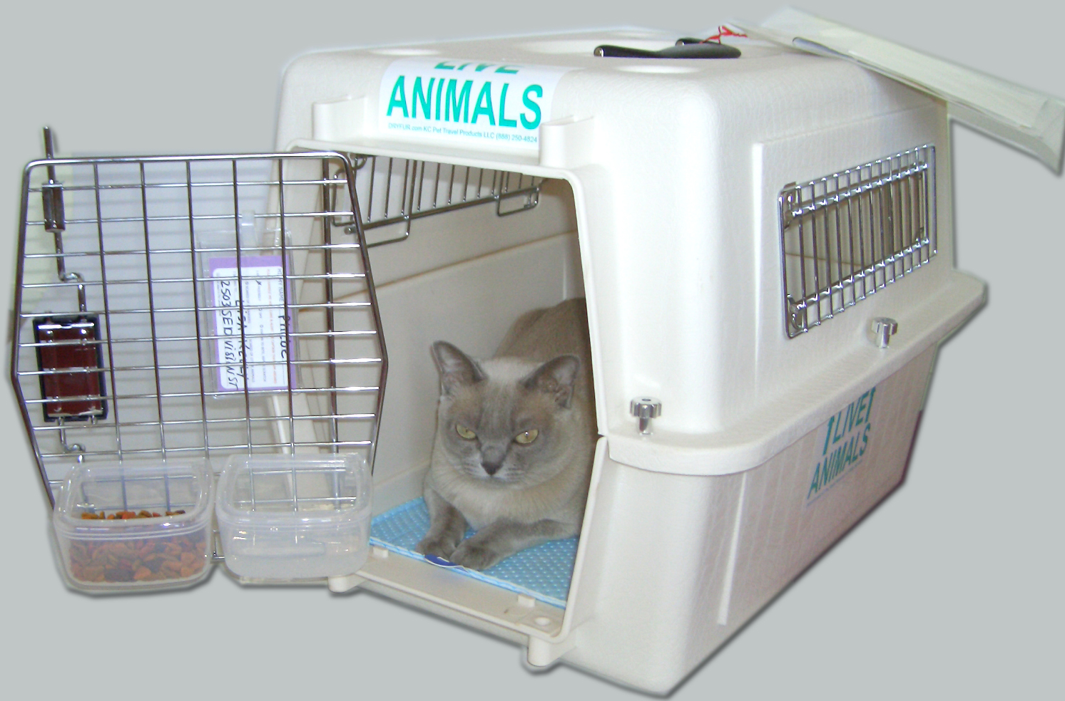 Cat Crate For Car Travel