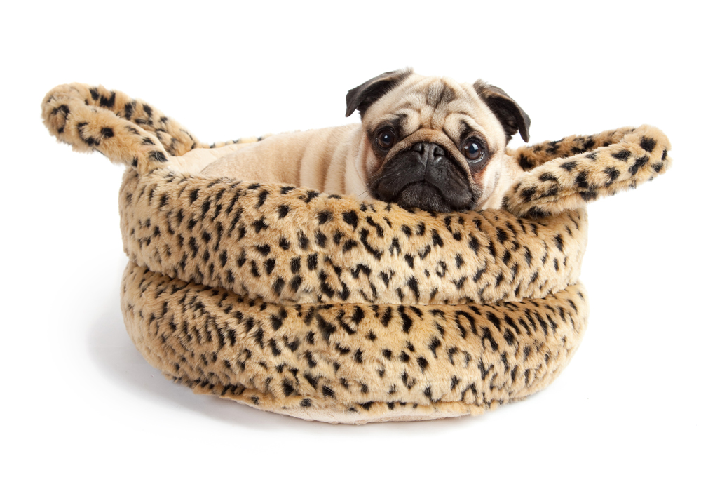 Is Faux Fur Made From Cats And Dogs