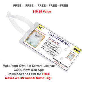 Free Travel Forms Pet Airline Passport Documents Dryfur