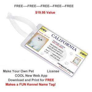 dog/cat drivers_license