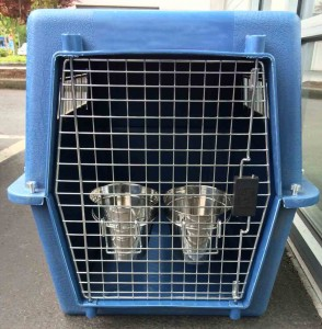 Stainless Steel Water Pails on Dog Kennel Door